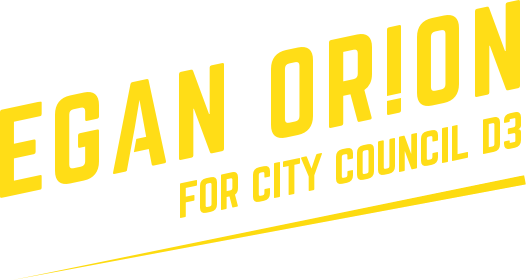 Egan for Seattle City Council D3